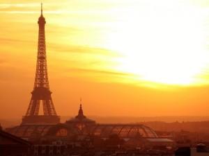 marché-immobilier-français